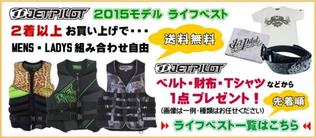 2015-vest3-2-small